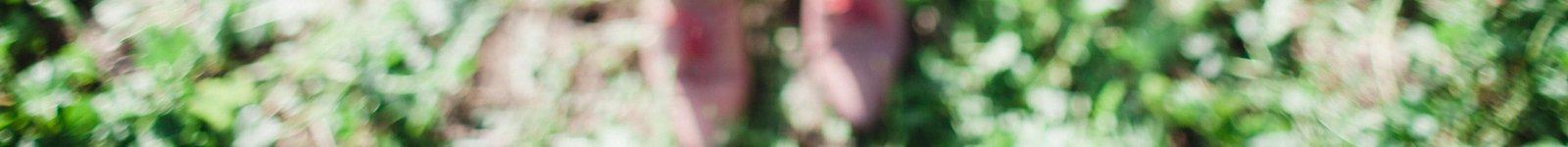 Heliotopia thumbnail